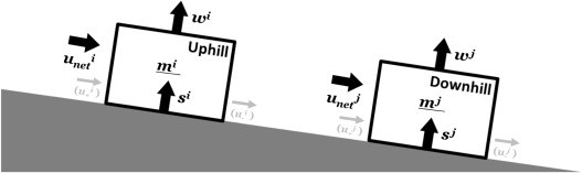 Identifying CO2 advection on a hill slope using information flow